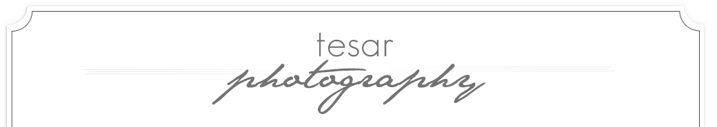Tesar Photography | Boise Idaho Wedding Photographer logo